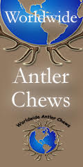 Worldwide Antler Chews 120 x 240