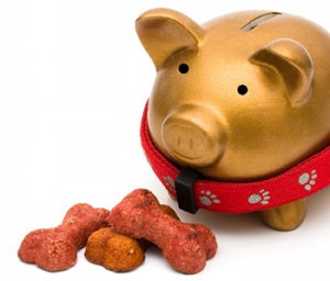 Pet Food Money Saving Tip