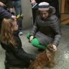 Girl Reunited With Stolen Dog on Christmas